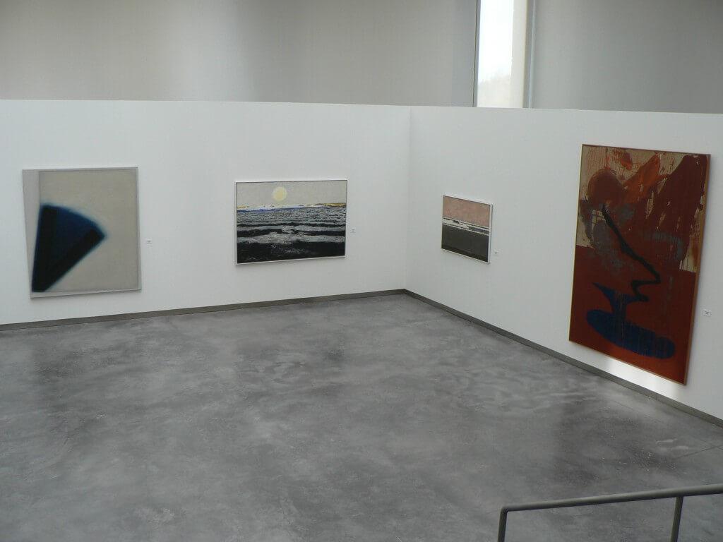 foto expo confluencias