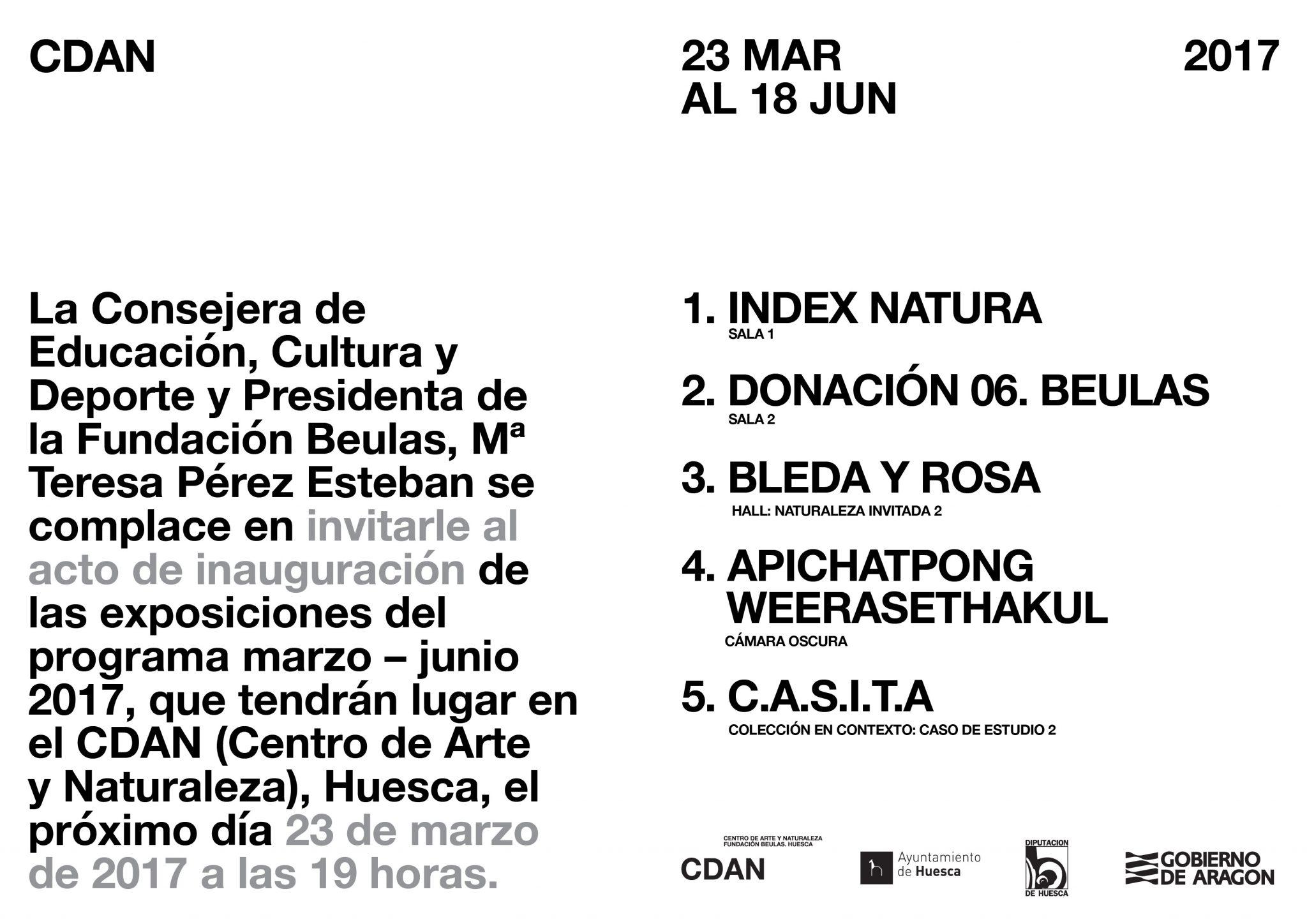 CDAN. invitacion_programacion