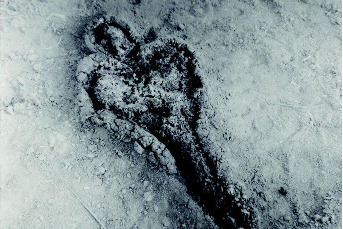 ANA MENDIETA | Cuerpo de tierra