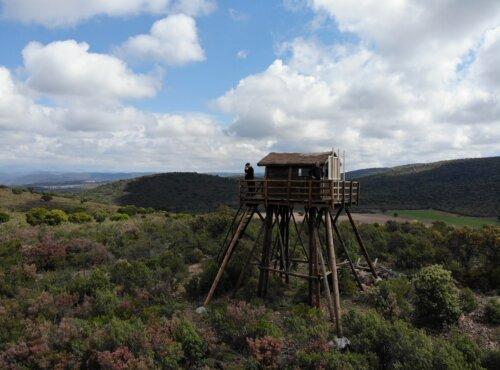 Cabaña/mirador del proyecto La naturaleza del paisaje