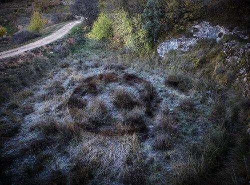 Círculo de hierbas. Enclave Land Art